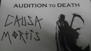 Causa Audition image